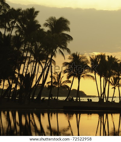 Hawaiian scenic: silhouettes of beachgoers under palm trees, waiting for sunset, at Anaehoomalu Bay on the Kona Coast of the Big Island - stock photo