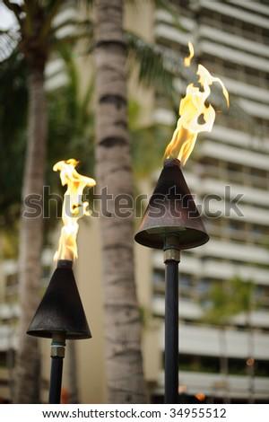 Hawaiian torches - stock photo