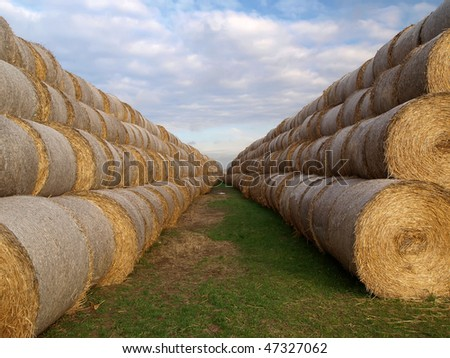 hay and straw bales - stock photo