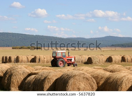 Hay and Tractor in Field - stock photo