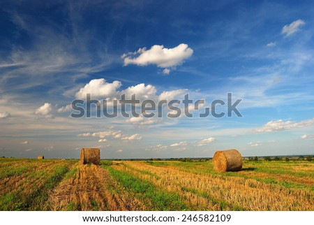 Hay Bale Farm / Summer landscape with bales and clouds / Hay bales on the field after harvest, Hungary - stock photo
