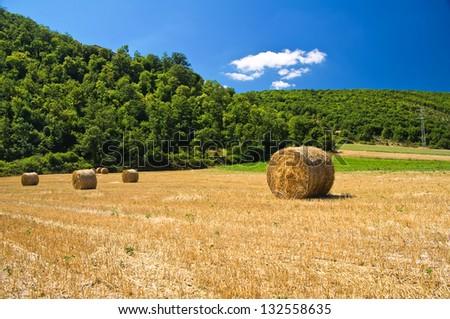 Hay bale field. - stock photo