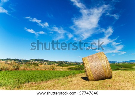 Hay bale in a beautiful sunny landscape