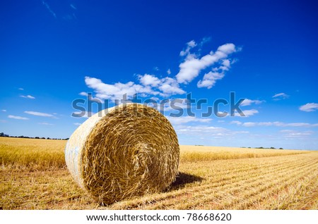 Hay bale in a field under a blue sky - stock photo