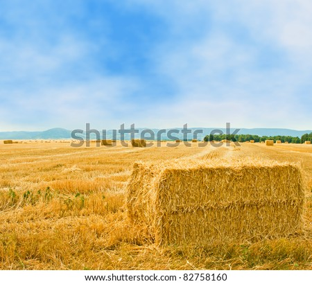 Hay bale in the countryside. - stock photo