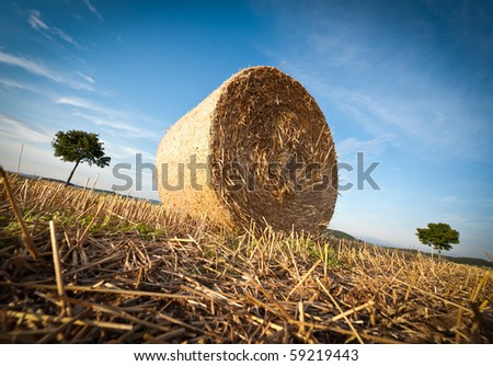 Hay Bale on the late Afternoon - stock photo
