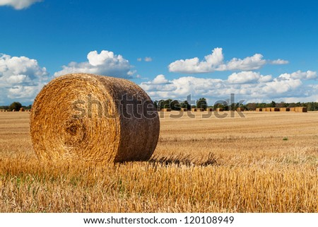 Hay bale on the swedish field - stock photo