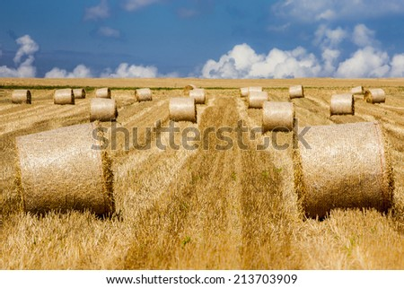 hay bales in a beautiful landscape of Normandy, France - stock photo