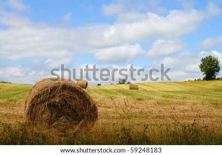 Hay bales in a summer field with beautiful clouds in the sky - stock photo
