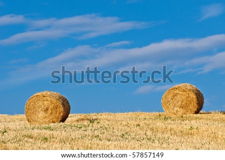Hay bales in early morning