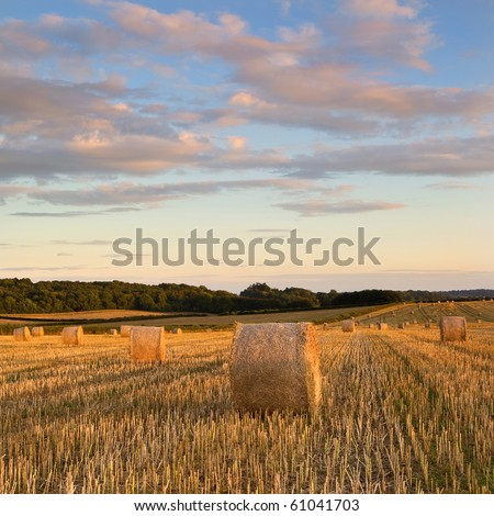 Hay Bales late on a summers evening nr. Wimborne, Dorset, UK - stock photo