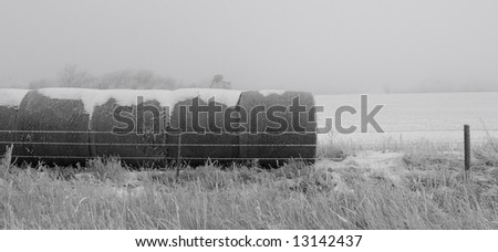 Hay bales on a frosty and foggy winter morning in rural South Dakota. - stock photo