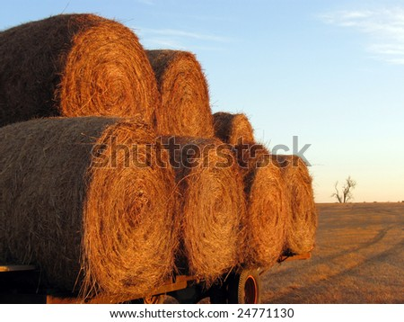Hay bales on a trailer. - stock photo
