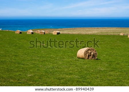 Hay Bales on coast. Slope Point, Catlins, South Island, New Zealand. - stock photo
