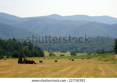 Hay bales on field - stock photo