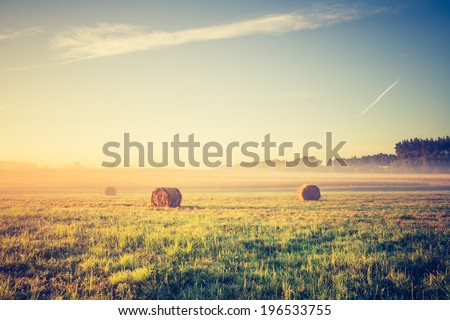 hay bales on foggy morning on meadow. sunrise landscape photo with vintage effect - stock photo