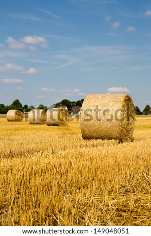 hay bales on grain field  - stock photo