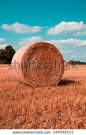 hay bales on grain field