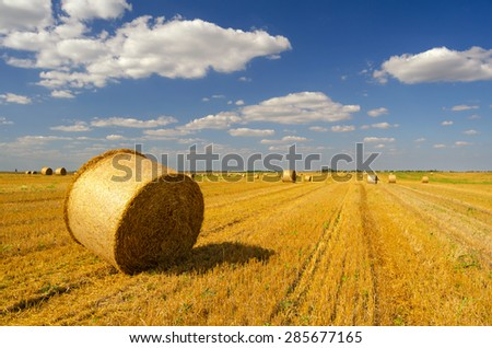 Hay bales on the agricultural field after harvest, Serbia. - stock photo