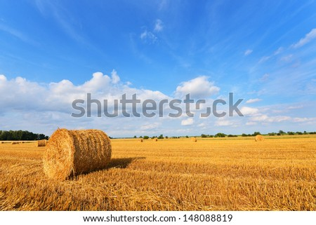 Hay bales on the field after harvest, Poland - stock photo