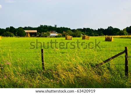 Hay bales on the green meadow in evening - stock photo