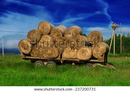 Hay bales on the horse-drawn vehicle - stock photo