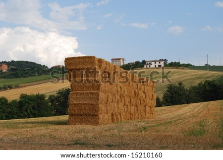 Hay bales stacked in a field - stock photo