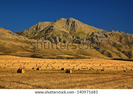 Hay Bales - Western Cape, South Africa - stock photo
