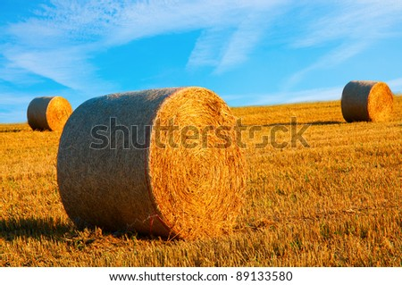 hay bales with a blue sky - stock photo