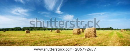 Hay bales with blue sky - stock photo