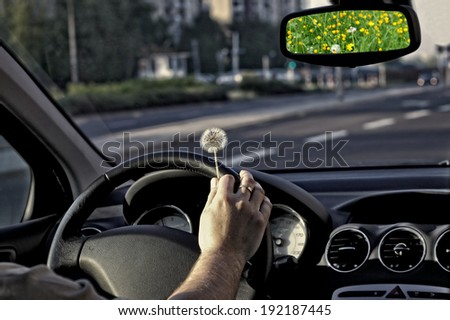 Hay fever among drivers - stock photo