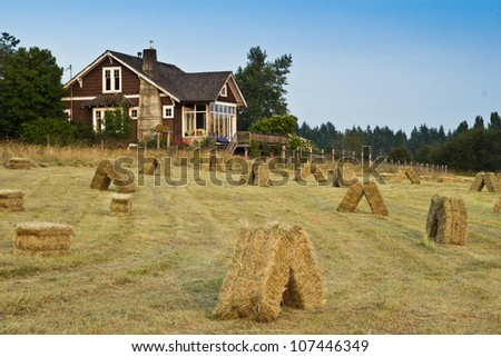 Hay field with bales on foreground with farm house in background - stock photo
