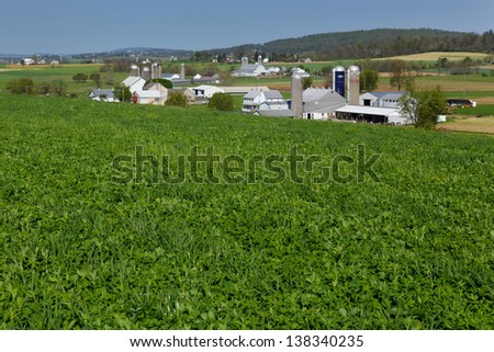 Hay field with farms in distance - stock photo