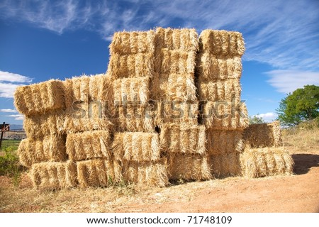 hay pile at the country of Castilla Spain - stock photo