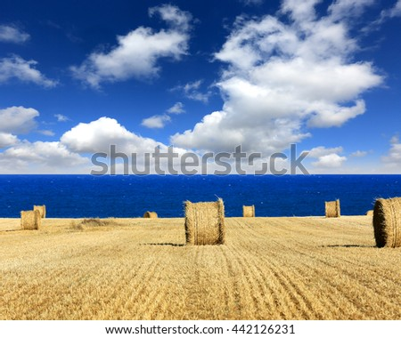 hay roll on meadow near sea under nice clouds in sky