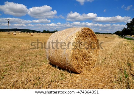 Hay stack on a field in Austria