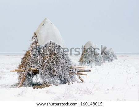 hay stack on the countryside in the netherlands during wintertime  - stock photo