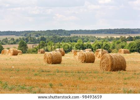 hay stacks in autumn field - stock photo