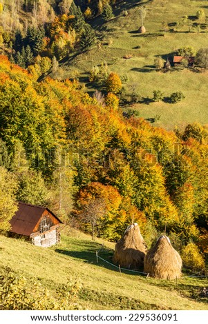 Hay stacks in countryside in a romanian villlage at the food of Piatra Craiului Mountains. - stock photo