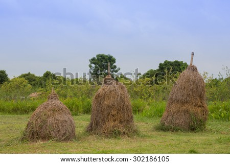 hay stacks up country  - stock photo