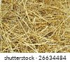 Hay. To see similar images, please VISIT MY GALLERY. - stock photo