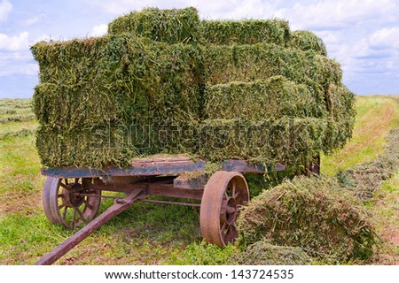 Hay Wagon:  An old wooden cart with heavy iron wheels gathers bales of fresh green hay on a farm in southern Pennsylvania.  - stock photo