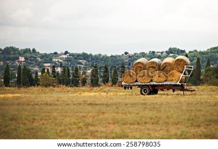 Hay wagon on the meadow. - stock photo