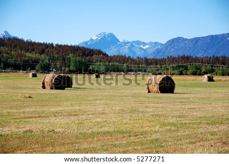 haybale and mountains