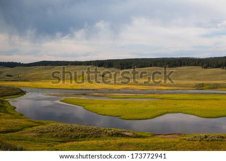Hayden Valley - place where American Bison live - stock photo