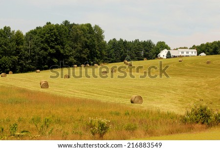 hayfield in maine - stock photo
