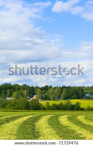 Haymaking against memorial estate Muranovo. Moscow region. Russia - stock photo
