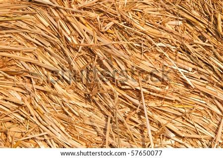 Haystack - stock photo