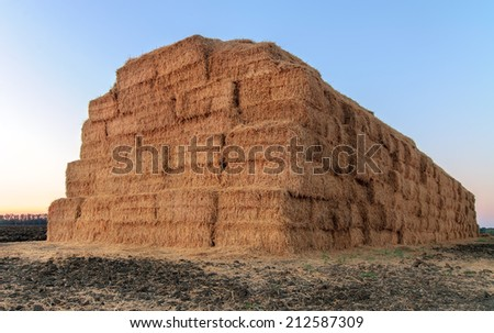 haystack after the harvest of wheat - stock photo