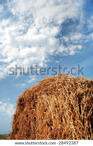 haystack in the field - stock photo